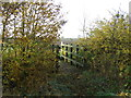 TL9147 : Footbridge by Keith Evans