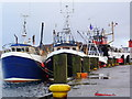 NR8668 : Fishing boats docked at Tarbert by sylvia duckworth