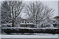 TQ5839 : Calverley Park in snow by N Chadwick