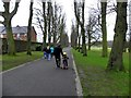 J0958 : The long straight avenue in Lurgan Park by Kenneth  Allen