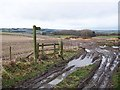 NY8876 : Muddy gateway near Dinley Hill by Oliver Dixon