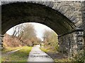 SJ9493 : Under Knott Fold Bridge by Gerald England