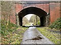 SJ9594 : New Year's Day on the Trans Pennine Trail by Gerald England
