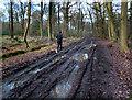 SU6983 : Jogging Through The Mud by Des Blenkinsopp