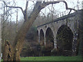 SK2565 : Old railway viaduct over the River Derwent by Andrew Hill