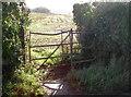 ST6858 : Rustic charm by Neil Owen