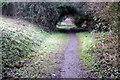 SP6833 : Railway Walk by Philip Jeffrey