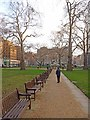 TQ2880 : Berkeley Square Gardens by Oliver Dixon