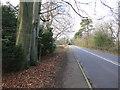 TQ1928 : Public Bridleway by The Saunterer