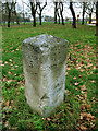 TQ2874 : Milestone on Clapham Common (1) by Stephen Craven