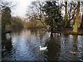 SD5706 : Mesnes Park Lake, Wigan by David Dixon