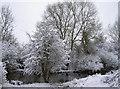 ST6269 : Snowy pond by Neil Owen