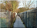 TR2036 : Footpath, Morehall by Robin Webster