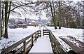SO8377 : Snow in Springfield Park, Kidderminster by P L Chadwick