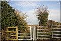 SJ8082 : Woodend Lane end by Peter Turner
