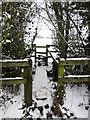 SP7329 : Footbridge over the stream by Philip Jeffrey