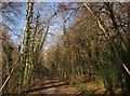 SX8079 : Railway path, Parke by Derek Harper