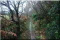TQ2030 : High Weald Landscape Trail by N Chadwick