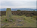 SK2462 : Trig point on Stanton Moor by Trevor Littlewood