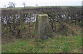 SK3978 : Trig point adjacent to B6056 by Trevor Littlewood
