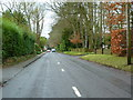 TQ1755 : Reigate Road, Leatherhead by Alexander P Kapp