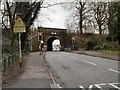SJ5995 : Park Road Railway Bridge by David Dixon