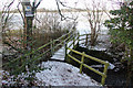 SJ8965 : Footbridge over the Cow Brook by Peter Turner