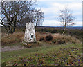 SJ9818 : Trig point of Brocton Field by Trevor Littlewood