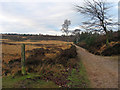 SJ9816 : Bridleway north from Gospel Place by Trevor Littlewood