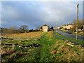 SE0441 : Waste Ground beside North Dean Road : Week 5