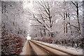 NY3564 : Snowy Road by David Liddle