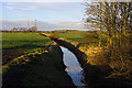 SD4359 : Grazing land & drainage ditch, Middleton by Ian Taylor