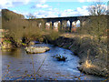 SJ5694 : Sankey Brook and Viaduct by David Dixon