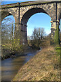 SJ5694 : Sankey Brook, Sankey Viaduct by David Dixon