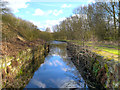 SJ5794 : Sankey Canal, Bradley (Bradlegh) Lock by David Dixon