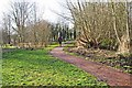 SO8377 : Path in Springfield Park leading to play area, Kidderminster by P L Chadwick