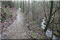 SJ9894 : Path in Hurst Clough by Dave Dunford