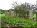 TL2338 : St Mary Magdalene, Caldecote, Graveyard by Alexander P Kapp