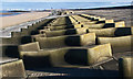 SJ2591 : Sea defences on the Wallasey embankment : Week 6