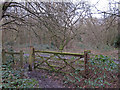 TQ6787 : Mossy Gate in Lincewood, Langdon Nature Reserve by Roger Jones
