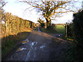 TM4562 : Grimsey's Lane, Leiston by Adrian Cable