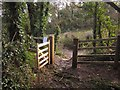 SX8767 : Exit from access woodland, Churchway Lane by Derek Harper