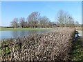 TL1397 : Flooding in Ferry Meadows Country Park, Peterborough by Richard Humphrey