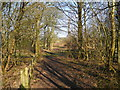 SJ9099 : Footpath west of Medlock Vale Farm by John Topping