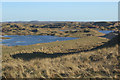 SS7882 : Flooded duneland at Kenfig Nature Reserve by eswales