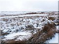 NY8445 : Snowy hummocks on Allendale Common by Oliver Dixon