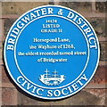 Photo of Horsepond Lane blue plaque