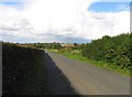 SK6506 : Beeby Road towards Beeby by Andrew Tatlow