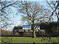 SP1272 : M42 junction 3a west: roadside tree at the split by Robin Stott