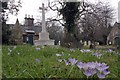 TQ5992 : The Old Brentwood Cemetery by Glyn Baker